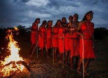 战士傍晚跳舞礼节舞的马塞人部落在火附近 免版税库存照片