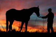 战士和马 免版税库存图片