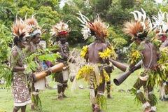 战士部落跳舞在热带雨林村庄 库存图片