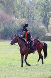 战士骑一匹棕色马。 免版税库存图片