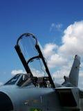 战斗喷气机 库存照片