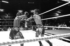 战斗在拳击台的泰国年轻拳击手 免版税图库摄影