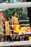 战斗拳击 免版税库存图片
