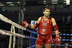 非职业Muaythai世界冠军 图库摄影