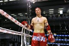 Muaythai世界冠军 库存图片
