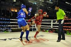 非职业Muaythai世界冠军 库存照片