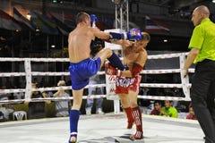 Muaythai世界冠军 免版税图库摄影