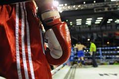 Muaythai世界冠军 免版税库存图片