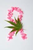 战斗癌症标志由桃红色丝带做成 库存图片