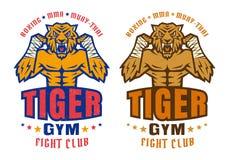 战斗的俱乐部的商标与恼怒的老虎 库存图片