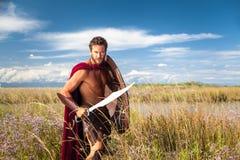 战斗的古老战士在风景背景中 库存图片