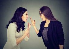 战斗 两名妇女尖叫对彼此 库存照片