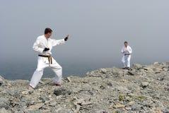 战斗karateka二 库存照片