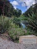 战时的美国纪念品死在英国庭院里 图库摄影