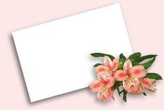 截去花卉路径明信片的背景 库存图片