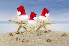 戴在海滩的三个海星圣诞老人帽子 库存照片