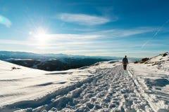 戴太阳镜的一个有胡子的行家和毛线衣在一条积雪的路去本质上在一个晴天在冬天 免版税库存照片