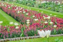 戴安娜Memorial Garden公主在海德公园 库存照片