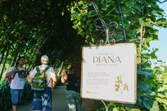 戴安娜Memorial Garden公主绿色隧道在海德公园 库存照片