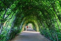 戴安娜Memorial Garden公主绿色隧道在海德公园 免版税库存图片
