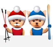 戴帽子的滑稽的狗 圣诞节概念 库存例证