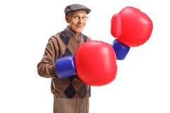 戴着一个对大拳击手套的前辈 库存照片