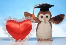 戴着毕业帽子的一个软的玩具 免版税库存图片