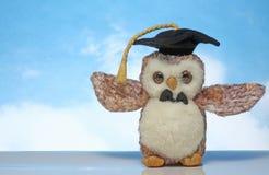 戴着毕业帽子的一个软的玩具 免版税库存照片