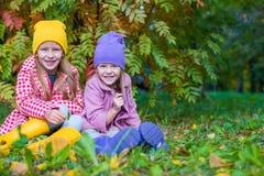 户外两个可爱的女孩在秋天森林里 免版税库存照片
