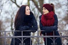 户外严肃的交谈的轻松的妇女 免版税库存照片