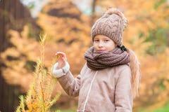 户外可爱的小女孩画象美好的秋天天 库存图片