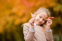 户外可爱的小女孩画象美好的秋天天 免版税库存照片