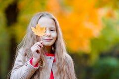 户外可爱的小女孩美好的温暖的天在有黄色叶子的秋天公园在秋天 免版税图库摄影