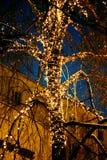 户外圣诞节城市 库存照片