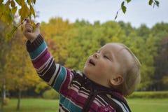 户外女孩在秋天 免版税库存图片