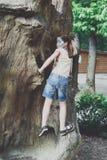 户外女孩孩子爬与蝴蝶面孔绘画的树 库存照片