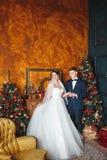 户外婚姻冬天的新娘新郎 恋人新娘和新郎在圣诞节装饰 一起HGroom和新娘 夫妇拥抱 衣物夫妇日愉快的葡萄酒婚礼 库存照片