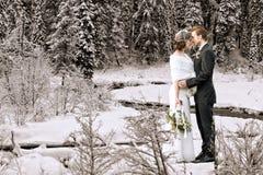户外婚姻冬天的新娘新郎 免版税库存图片