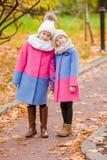 户外小可爱的女孩温暖的晴朗的秋天天 库存图片