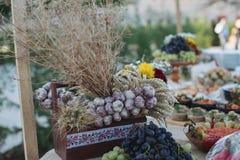 户外指叉桌用传统摩尔达维亚开胃菜 免版税图库摄影