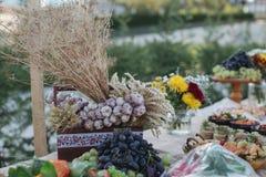 户外指叉桌用传统摩尔达维亚开胃菜 库存照片