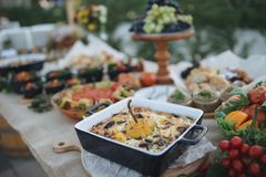 户外指叉桌用传统摩尔达维亚开胃菜 免版税库存照片