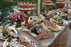 户外指叉桌用意大利开胃菜和新流程 图库摄影