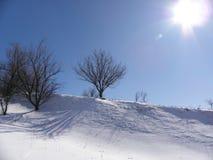 户外横向倾斜雪体育运动冬天 库存图片