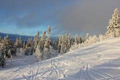 户外横向倾斜雪体育运动冬天 免版税库存照片