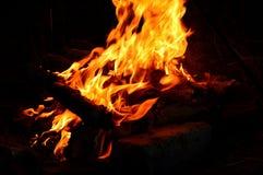 户外篝火 库存图片
