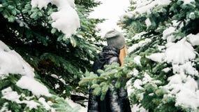 户外走通过多雪的云杉的森林的美丽的女孩画象 后面 享受冬天 免版税库存图片