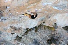 户外运动活动 登高的攀岩运动员富挑战性峭壁 极端体育上升 免版税图库摄影