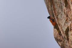 户外运动 登高的攀岩运动员富挑战性峭壁 极端体育上升 库存图片