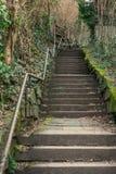 户外长的弯曲的胡同楼梯种植紧的陡峭的Handrai 库存图片